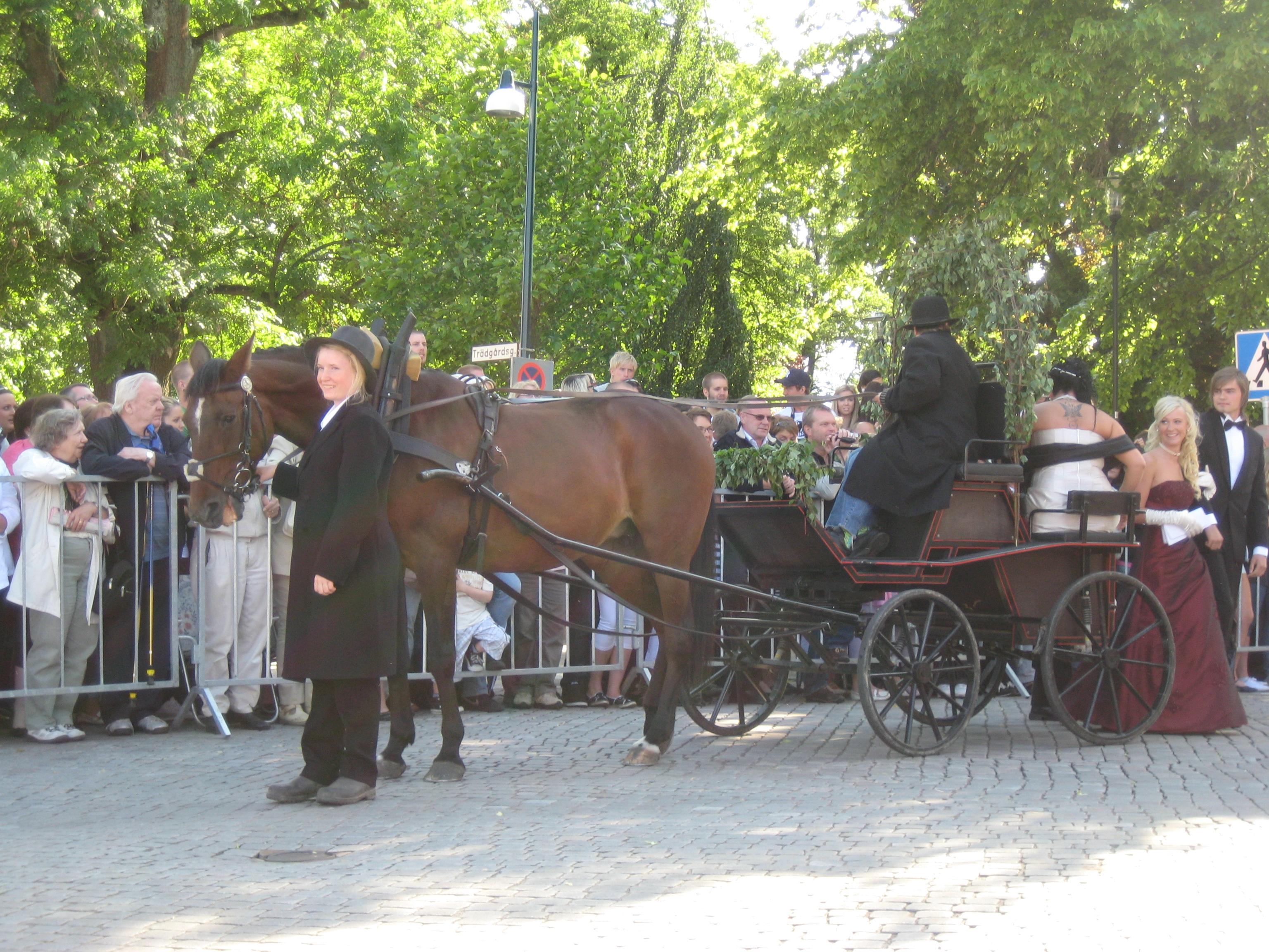 massage skövde stockholm escort service